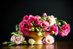 Beautiful bouquet of pink lisianthus flowers. On a black background Royalty Free Stock Image