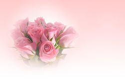 Beautiful bouquet of pink roses flower, soft tone Royalty Free Stock Photography