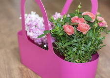 Beautiful bouquet of pink  roses  and hyacinth in a pink basket Stock Photo