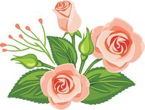 Beautiful bouquet of pink roses stock image