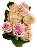 Beautiful bouquet of pink roses. Isolated on white background Royalty Free Stock Image