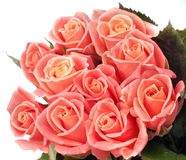Beautiful bouquet of pink roses. Isolated on white background Stock Images