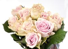 Beautiful bouquet of pink roses. On white background Royalty Free Stock Photo