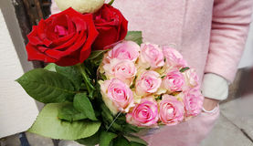 Beautiful bouquet of pink roses in woman`s hands royalty free stock photos