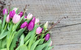 Bouquet of pink and violett tulips. Beautiful bouquet of pink and violet tulips on a wooden background Royalty Free Stock Image
