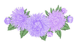 Beautiful bouquet with purple asters and leaves. Floral arrangement. design greeting card and invitation of the wedding, birthday, Stock Image