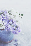 Beautiful bouquet of purple and white lilacs on grey background Stock Image