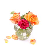 Beautiful bouquet red and orange roses in glass vase isolated on white Stock Photo