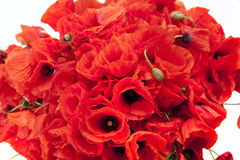 A beautiful bouquet of red poppies Stock Photo