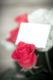 Beautiful bouquet of red rose Royalty Free Stock Photos