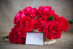 Beautiful bouquet of red roses Royalty Free Stock Photos