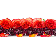 Beautiful bouquet of red roses with carnations Stock Image