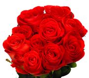 Beautiful bouquet of red roses. Isolated on white background Royalty Free Stock Photography