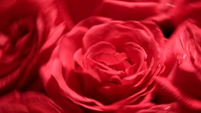 Beautiful bouquet of red roses with a reverse. Valentine's Day Beautiful bouquet of red roses with a reverse spinning rapidly stock footage