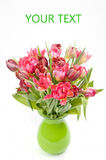 Beautiful bouquet of red tulip Royalty Free Stock Photos