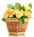 Beautiful bouquet of roses in basket Stock Photos