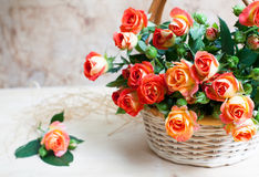 Beautiful bouquet of roses in basket on wooden table, selective Royalty Free Stock Images