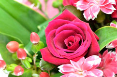 Beautiful bouquet of roses and carnations. Stock Photography