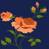 A beautiful bouquet of roses on a dark background. stock illustration