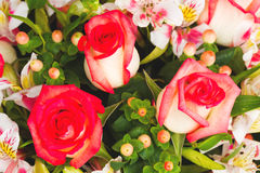 Beautiful bouquet of roses Stock Images