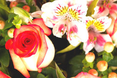 Beautiful bouquet of roses Royalty Free Stock Photography