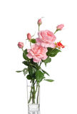 Beautiful bouquet of roses in a glass vase Stock Image
