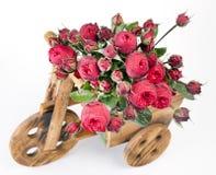 Beautiful bouquet of roses Peony Stock Photo