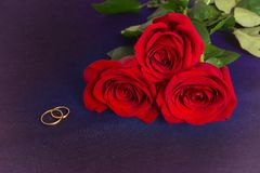 Gold wedding rings and three red roses on blue fabric Stock Photo