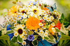 Beautiful bouquet of simple wild flowers. Royalty Free Stock Photos