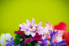 Beautiful bouquet of spring flowers. On a green background Stock Photo