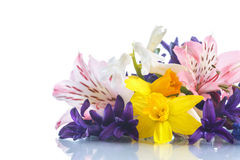 Beautiful bouquet of spring flowers Stock Photo