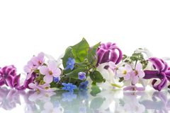 Beautiful bouquet of spring flowers Royalty Free Stock Photos