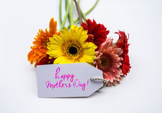 Beautiful bouquet of spring flowers on a white background Stock Image