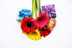 Beautiful bouquet of spring flowers on a white background Stock Images