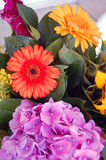 Beautiful bouquet of summer flowers Royalty Free Stock Photography