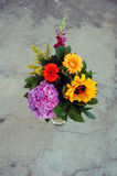 Beautiful bouquet of summer flowers Royalty Free Stock Photo