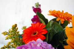 Beautiful bouquet of summer flowers Royalty Free Stock Image