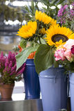 Beautiful bouquet of sunflower Stock Photography