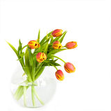 Beautiful bouquet of tulips. In glass vase on the white background Stock Images