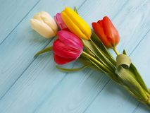 Beautiful bouquet of tulips on blue wooden natural decorative March 8 stock image