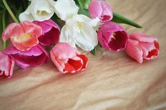 Beautiful bouquet of tulips. Beautiful bouquet of colorful tulips on a paper background stock photo