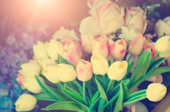 A beautiful bouquet of tulips. Festive decorations. A toned picture in the style of instagram. Close-up royalty free stock photography