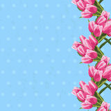 Beautiful bouquet of tulips, floral background. Royalty Free Stock Photography