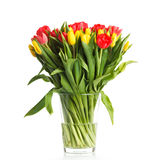 Beautiful bouquet of tulips. A bouquet of fresh tulips Royalty Free Stock Photography