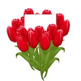 Beautiful bouquet of tulips with a note inside. Greeting card to Women s Day isolated on white background Stock Photography