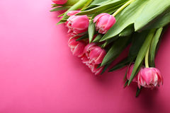 Beautiful bouquet of tulips on pink background Royalty Free Stock Photography