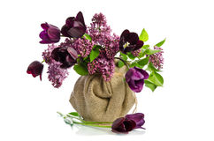 Beautiful bouquet of tulips with sprigs of lilac Royalty Free Stock Photos