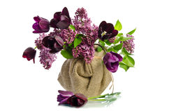 Beautiful bouquet of tulips with sprigs of lilac Stock Photos
