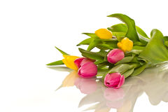 Beautiful bouquet of tulips Royalty Free Stock Images