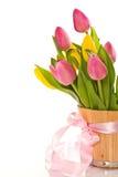 Beautiful bouquet of tulips Stock Photos
